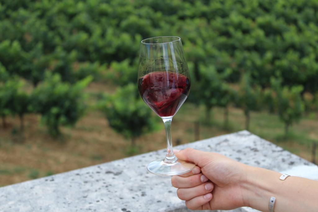 verre de vin en mouvement vigne